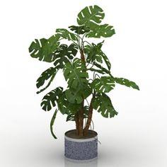 Download 3D Plant