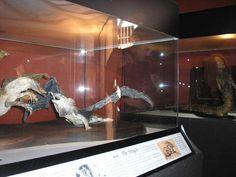 El museo de la brujería de Segovia