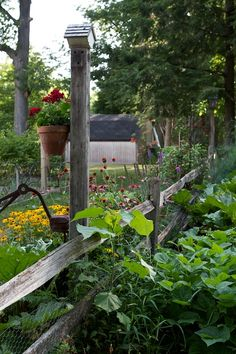 Nice idea having the split rail fence (minus the tall parts-corny). Could do edibles on one side (to keep dog/other animals out of them) and ornamentals on the other.