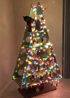 Catmas Tree 2018 - Cat Towers and Cat Products - Cat Christmas Tree, Christmas Time, Cat Trees For Sale, Colley, Cat Towers, Alternative Christmas Tree, Cat Playground, Cat Crafts, Christmas Decorations