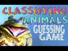 Classifying Animals - YouTube                                                                                                                                                     More