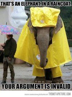 I want an elephant with a rain coat!