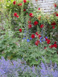 Delphiniums, red roses and catmint. Beautiful Gardens, Beautiful Flowers, Magical Gardens, Country Cottage Garden, Cottage Gardens, Herbaceous Border, Shade Flowers, Dream Garden, Paradise Garden