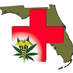 Florida State Lawmakers Will Consider Medical Marijuana Bill | State Sen. Jeff Clemens (D-Lake Worth) introduced a bill today that would allow Floridians with debilitating medical conditions to legally obtain and use marijuana if their doctors recommend it.