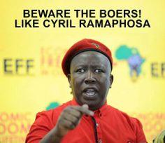 The intellegent Mr Malema