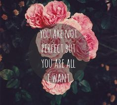 you are not perfect but you are all I want.....love