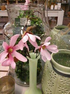 pastel groen en roze #pastel #groen #roze #karelhendriksen #tuincentrum #KH_TC