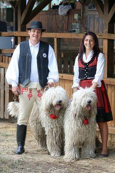 Komondor, Folk Clothing, Herding Dogs, Folk Dance, Dali, Beautiful Dogs, Budapest, Dog Breeds, Cute Animals