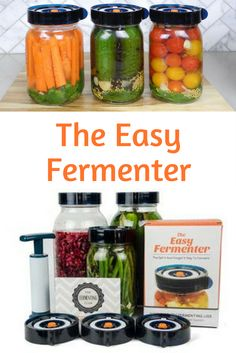Doctors recommend eating fermented foods for better gut health. Fermenting is especially encouraged for those with paleo and gluten-free diets to help restore and create healthy bacteria in the stomach. The Easy Fermenter Starter Kit includes three easy f Healthy Herbs, Healthy Diet Recipes, Healthy Vegetables, Raw Food Recipes, Healthy Drinks, Paleo Diet, Drink Recipes, Healthy Food, Best Probiotic Foods