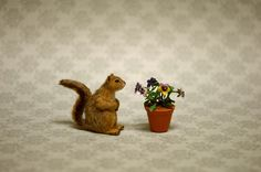 OOAK 1 12 Dollhouse Miniature Squirrel Wildlife Nature IGMA Fellow Linda Master | eBay