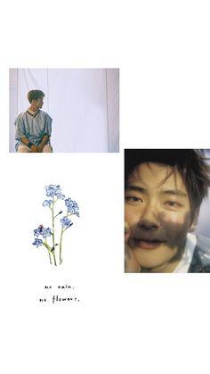 "NCT Jaehyun x NCT Mark // JaeMark // ""Forget-me-not"" Wallpaper"
