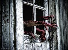 I saw movement inside the window. Soon one blood stained hand reached out of the window toward me. It tried to grasp me but I was too far away. Soon another hand came out and another, trying to lure me in.