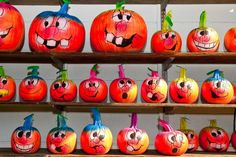 pumpkin faces pictures   Willow Run Nursery & Garden Center   Gallery - Cresskill, NJ