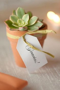 There's nothing cuter than succulent favors stuffed in a teeny container. Guests can display them in their homes or on office desks. The good thing about mini succulent gifts is they don't take up too much space and add a nice bit of greenery to your