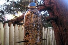 Soda Bottle Bird Feeder: With just a few simple items, turn your backyard into a bird paradise and learn about the different birds in your area.    *Materials:     One-liter soda bottle and cap with label removed  Utility knife  Thin wooden dowel or straight stick, 8 inches long  Bird seed  Masking tape  String  Funnel  *Instructions:     Cut two holes the size of a quarter, four inches from the bottom of the soda bottle (an adult should do this or closely supervise). The holes should be…