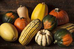 Assorted organique automne Squash sur un fond Banque d'images