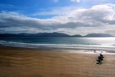 Banna Strand, Ireland  I've been completely on my own on this beach