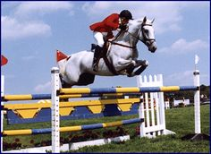 Windchase - Phyllis's Event Horses