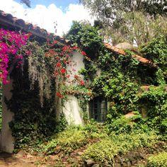 Hacienda Suescún.   Tibasosa, Boyaca. Colombia Vernacular Architecture, Pathways, How To Memorize Things, Around The Worlds, Country, Travel, Bella, Beautiful, Windows