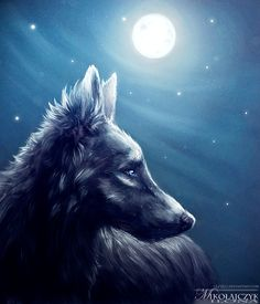 Full moon. by Safiru on DeviantArt