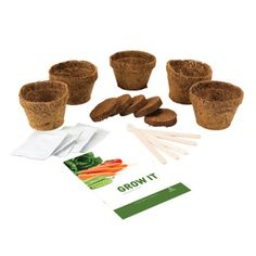 Vegetable Garden Starter Kit | dotandbo.com