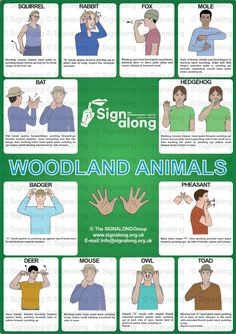 Signalong Signs for woodland animals: squirrel rabbit fox mole bat hedgehog pheasant badger deer mouse owl toad. Simple Sign Language, Sign Language Chart, Sign Language For Kids, Sign Language Phrases, Sign Language Alphabet, Sign Language Interpreter, Learn Sign Language, British Sign Language, Makaton Signs