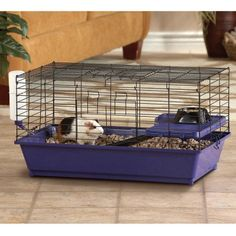 """Petsmart says this cage is a """"perfectly sized home for your guinea pig"""". Not only is this cage less than half the size it should be, the $60 you would have spent buying it could have built you a C&C cage in the right size, with cash to spare."""