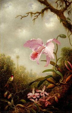 Martin Johnson Heade - Hummingbird with Cattleya and Dendrobium Orchids,1890