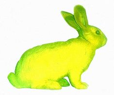 A glow-in-the-dark bunny named Alba was created by artist Eduardo Kac, who commissioned a scientist to inject a jellyish protein into a rabbit embryo.  What do you think? Are there things that artists and scientists just shouldn't do?
