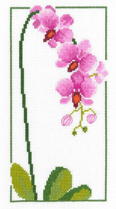 Orchid Cross Stitch Kit by Heather Anne Designs for Classic Embroidery Cross Stitch Heart, Cross Stitch Borders, Simple Cross Stitch, Counted Cross Stitch Kits, Cross Stitch Flowers, Cross Stitch Designs, Cross Stitch Patterns, Embroidery Designs, Christmas Embroidery Patterns
