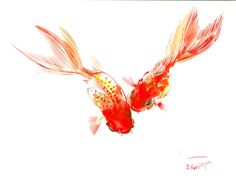 Two goldfish, feng shui watercolor art by ORIGINALONLY on Etsy