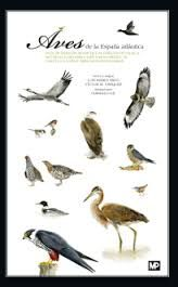 Aves de la España atlántica : guía de identificación de las especies de Galicia, Asturias, Cantabria, País Vasco, Norte de Castilla y León y Noroeste de Navarra
