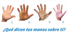 Aunque te parezca imposible de creer, la forma de tus manos refleja muchos sobre tu personalidad. Descubre algo más sobre ti que quizá no sabías.