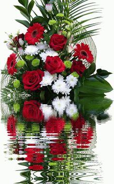 GIFS HERMOSOS: flores encontradas en la web    #FREEYUYEE