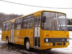 Busse, Commercial Vehicle, Eastern Europe, Public Transport, Motor Car, Techno, Vintage Cars, Diesel, Transportation