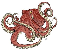 Octopus by ~ProdigyDuck on deviantART