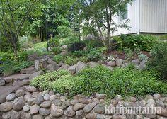Luonnonkivillä voi rajata rinteessä olevia istutusalueita luonnonmukaisesti. Garden, Plants, Outdoor, Outdoors, Garten, Gardens, Planters, Outdoor Living, Tuin