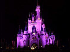 Walt Disney World photography site Disney Fun, Disney Trips, Disney Parks, Walt Disney World, Princess Castle, Cinderella Castle, Photography Sites, World Photography, Magic Kingdom Castle