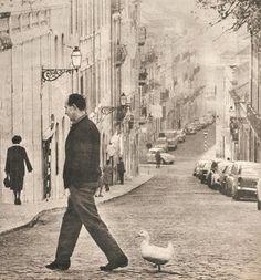 A man and his duck, Rua do Jasmim, Lisbon 1971