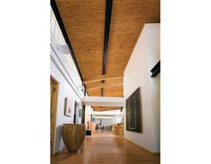 lineage wood looks commercial ceiling planks from armstrong ceiling solutions