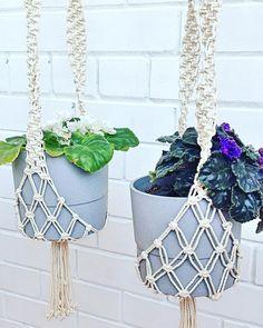 На изображении может находиться: растение Макраме, Растения, Домашний Декор