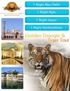 The 04 Night 05 Days Golden Triangle Tour of India includes the sightseeing of Delhi, Jaipur and Agra. These cities are also known as the centre for rich cultural heritage and history. This tour package is designed for the individual interested in exploring the traditions and customs of India in a short period of time.  If you want to know more about the more packages through our online portal