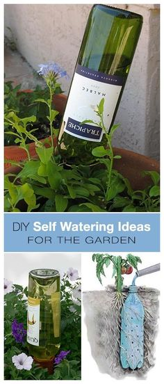 Check out the webpage to see more on Beginner Gardening Please click here for more information.