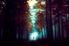 Into The Light by kokoszkaa.deviantart.com on @deviantART