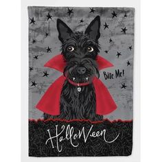 Halloween Vampire, Dog Halloween, Halloween Pictures, Halloween House, Vintage Halloween, Big Dogs, Dogs And Puppies, Doggies, Wooden Flag Pole
