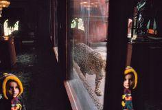"""""""Las imágenes no son lo que queremos que ellas sean, sino lo que el tiempo hace de nosotros"""" —Jorge Nunes (Imagen: Alex Webb. Tijuana, 1995)"""