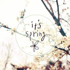 """Зима пролетела быстро, другое время  так близко.  Скоро начнётся капель, появятся почки и на деревьях распустятся первые листочки.  Ручьи будут течь, а птички - летать, зелёная травка под ногами шептать и яркое солнце сиять в небосводе, скажем """"спасибо!"""" за это природе.  Под теплым дождём мы будем гулять, а потом целый день в кровати лежать.  Весна принесёт нам не мало хлопот : грязная обувь, дожди, огород.  Весна принесёт нам много веселья : радуга, ролики, блины с вареньем .  Светлое утро…"""