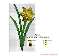 Semplice schema punto croce fiore narciso