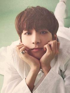 Seventeen || Wonwoo || TEEN_AGE photobook