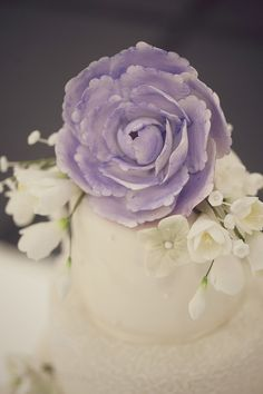 This lilac sugar flower makes the perfect cake topper for this beautiful ivory wedding cake Ivory Wedding Cake, Wedding Cakes, Cake Accessories, Sugar Flowers, Flower Making, Wedding Cake Toppers, Wedding Couples, Couple Photography, Lilac